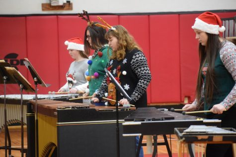 Percussion Ensemble and Gabriel Youth Orchestra Play for Elementary Students