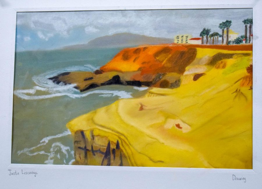 Sophomore+Justin+Lescavage+submitted+his+project+from+Drawing+One+for+the+art+show.+%E2%80%9CIt%E2%80%99s+based+off+a+picture+my+brother+took+in+San+Diego%2C+California.+I+loved+drawing+class.+Two+of+my+favorite+things+to+do+are+draw+and+create+art.%E2%80%9D+%0A%28TDL+is+not+responsible+for+picking+the+artwork+featured+in+this+gallery.+All+artwork+is+picked+by+the+PAHS+Art+Department.%29+